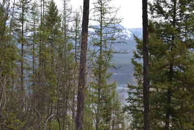 Flathead County Residential Lots & Land For Sale: 1335 Lion Mountain Drive