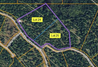Lake County Residential Lots & Land For Sale: Lot 24,  25 Big Rock Way