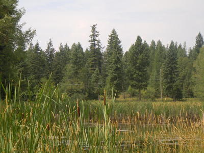 Lake County Residential Lots & Land For Sale: 322091 Morningview Lane