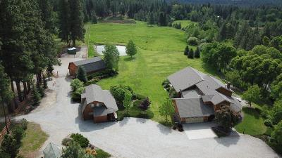 Hamilton Single Family Home For Sale: 860 Sheafman Creek Road
