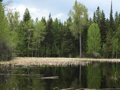 Missoula County Residential Lots & Land For Sale