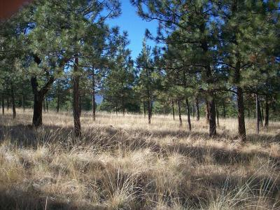 Sanders County Residential Lots & Land For Sale: River Ridge West