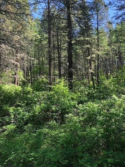 Bigfork Residential Lots & Land For Sale: Nhn Highway 35