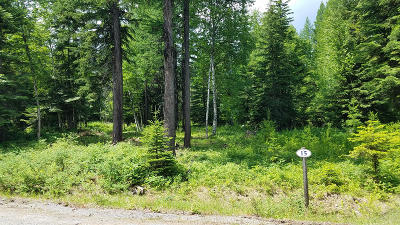 Bigfork Residential Lots & Land For Sale: 14112 Ridge Loop Road