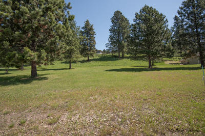 Flathead County Residential Lots & Land For Sale: 1083 Boat Club Drive