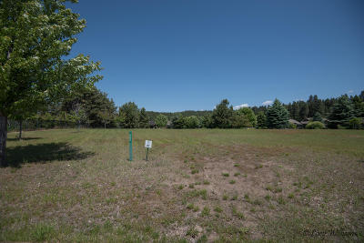 Bigfork Residential Lots & Land For Sale: 243 Bluebunch Court
