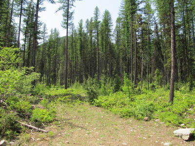 Flathead County Residential Lots & Land For Sale: 14875 Highway 2 East