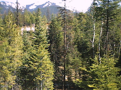 Kalispell Residential Lots & Land For Sale: 54 Wild Turkey Lane
