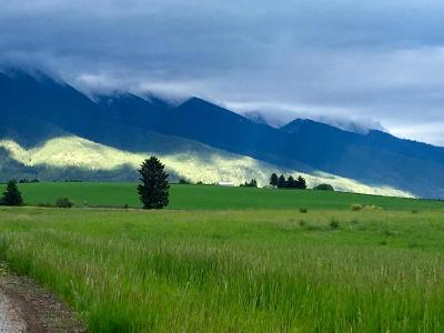 Flathead County Residential Lots & Land For Sale: 154 Fairview Lane