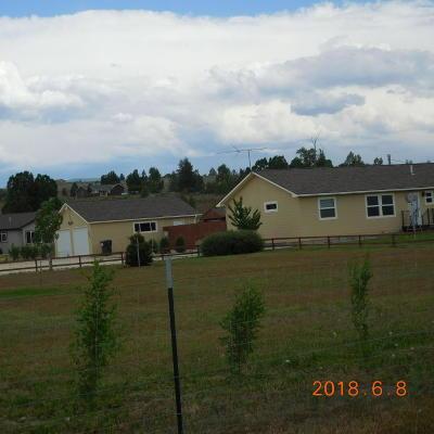 Stevensville Single Family Home For Sale: 355 Moiese Lane