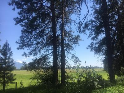 Flathead County Single Family Home Under Contract Taking Back-Up : 1150 Hodgson Road