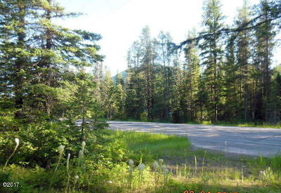 Flathead County Residential Lots & Land For Sale: 14353 Highway 2 East