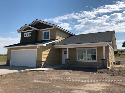 Flathead County Single Family Home For Sale: 174 Swede Trail