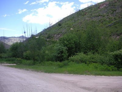 Ravalli County Residential Lots & Land For Sale: Lot 7 Wet Draw Road