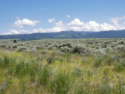 Stevensville Residential Lots & Land For Sale: Lot 5 Wheat Grass Road