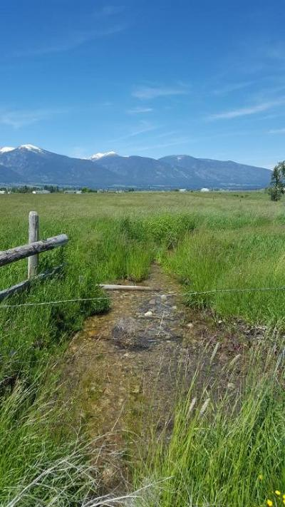 Stevensville Residential Lots & Land For Sale: Nhn White Peaks