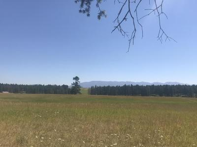 Kalispell Residential Lots & Land For Sale: 315 Bowdish Road