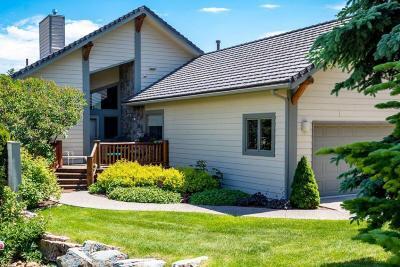 Flathead County Single Family Home For Sale: 123 Juniper Bend Drive