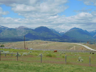 Ravalli County Residential Lots & Land For Sale: Tract 56b Corvallis Hills Drive