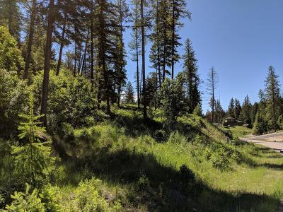 Bigfork Residential Lots & Land For Sale: 1021 Silvertip Drive North