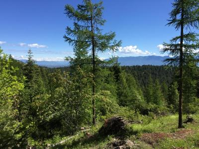 Kalispell Residential Lots & Land For Sale: Overlook Ridge