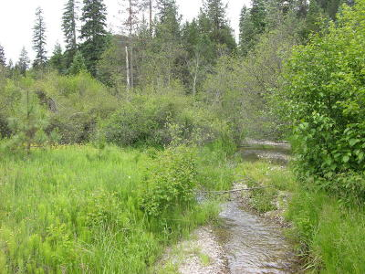 Sanders County Residential Lots & Land For Sale: Nhn Mosquito Creek Road