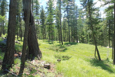 Flathead County Residential Lots & Land For Sale: 115 Elk Valley Drive