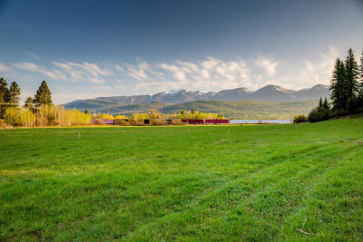 Flathead County Residential Lots & Land For Sale: 209 Wild Rose Lane