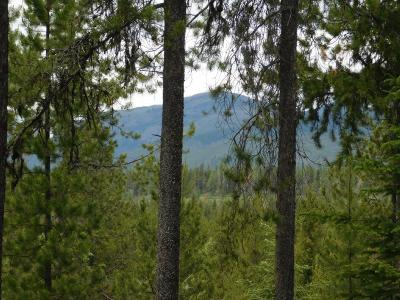 Flathead County Residential Lots & Land For Sale: 470 Kuzmic Lane