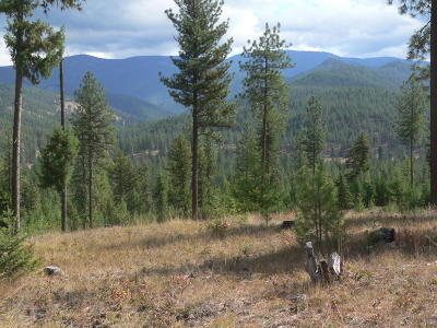 Missoula County Residential Lots & Land For Sale: Nhn Southside Road
