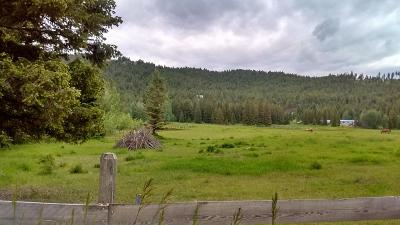 Flathead County Residential Lots & Land For Sale: 482 & 490 Dower Draw