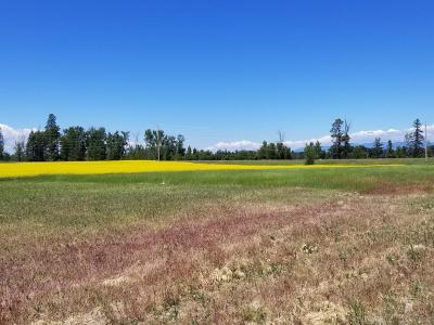 Flathead County Residential Lots & Land For Sale: 394 McWenneger Drive