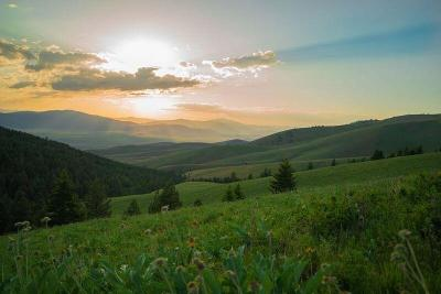 Sanders County Residential Lots & Land For Sale: Nhn Coppedge Gulch Road