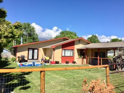Stevensville Single Family Home For Sale: 309 Spring Street