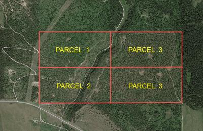 Lake County Residential Lots & Land For Sale: Section 17 North Dayton Creek Road