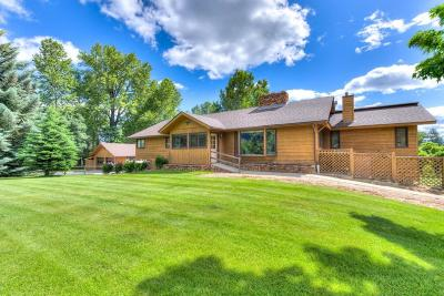 Victor Single Family Home For Sale: 2360 Red Crow Road