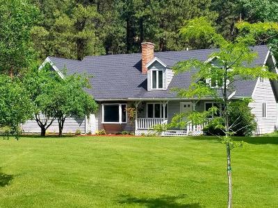 Kalispell Single Family Home For Sale: 431 Chestnut Drive