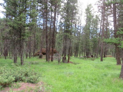 Kalispell Residential Lots & Land For Sale: 1417 Lost Creek Drive
