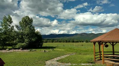 Missoula County Single Family Home For Sale: 331 Cottonwood Lakes Road