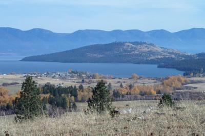 Lake County Residential Lots & Land For Sale: Tract 1 Black Lake Road