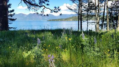 Lake County Residential Lots & Land For Sale: Nhn White Swan Lane