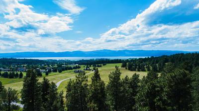 Bigfork Residential Lots & Land For Sale: 34 Red Tail Ridge