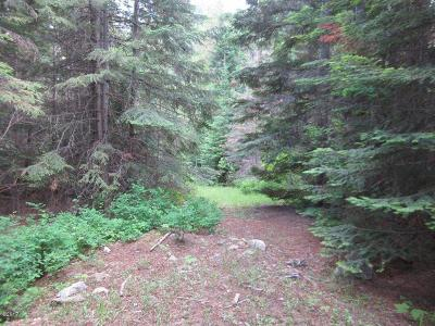 Lincoln County Residential Lots & Land For Sale: Kilbrennan Creek Road