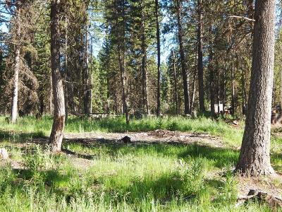 Seeley Lake MT Residential Lots & Land For Sale: $45,000