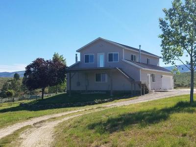 Stevensville Single Family Home For Sale: 1198 Hegson Drive