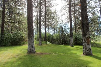 Kalispell Residential Lots & Land For Sale: 312 Ponderosa Lane