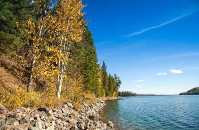 Whitefish Residential Lots & Land For Sale: 3460 East Lakeshore Drive