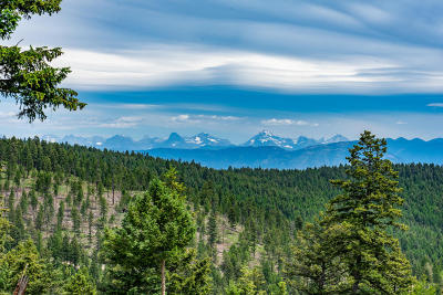 Kalispell Residential Lots & Land For Sale: 2720 Sirius View
