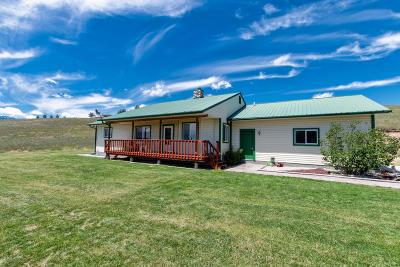 Stevensville Single Family Home For Sale: 4930 Fox Gulch Road