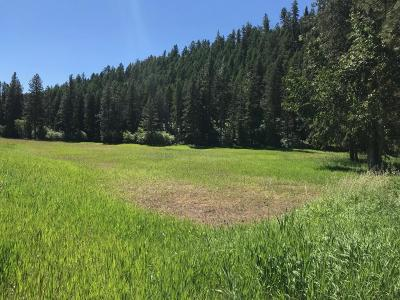 Missoula Residential Lots & Land Under Contract Taking Back-Up : Big Flat Road